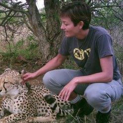 Orphan cheetah